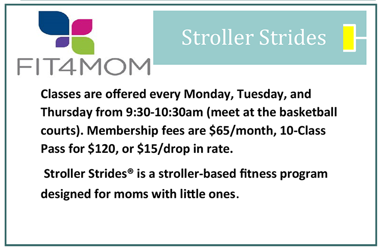Fit4Mom Stroller Strides Fitness